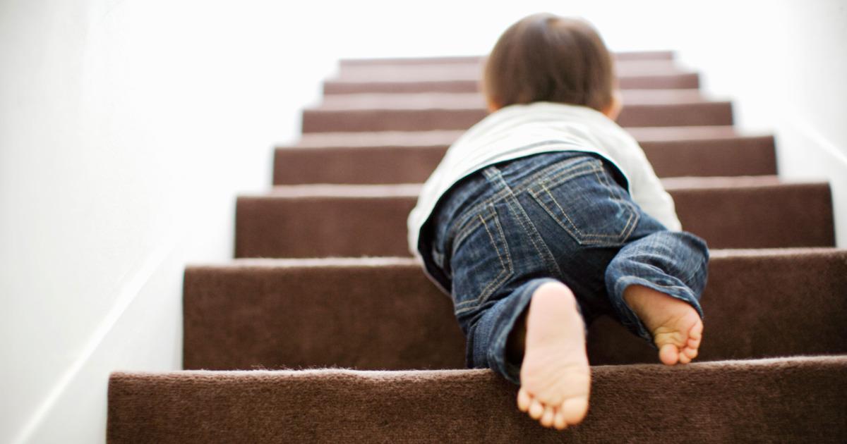 Thiên tài có hình thành như thế nào từ sự giáo dục từ sớm của ba mẹ?